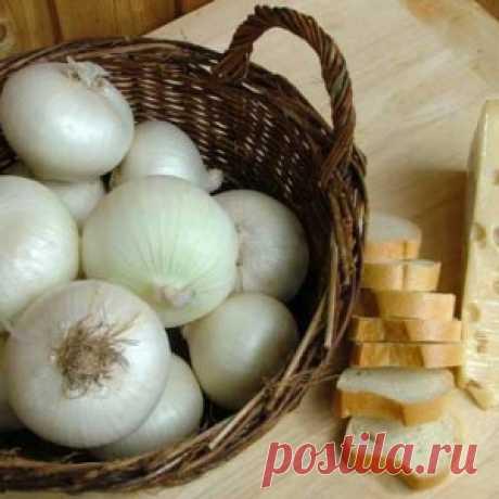 Лечебные свойства белого лука