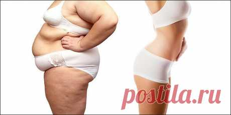 Шведская система похудения: 3 кг за 4 дня | Мисс слим | Яндекс Дзен