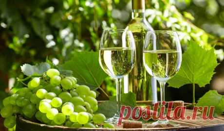 Эрети — сухое белое вино с плодовыми тонами - Жми!