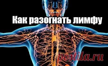 Как разогнать ЛИМФУ? САМЫЕ действенные способы! ЛИМФАТИЧЕСКАЯ система призвана очищать организм. Кровь транспортирует корганам итканям необходимый кислород ипитательные...