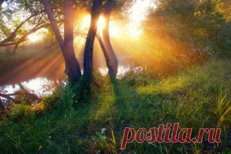 Рассвет у реки Волчья. Харьковская область, Украина. Автор фото — Виктор Тулбанов: