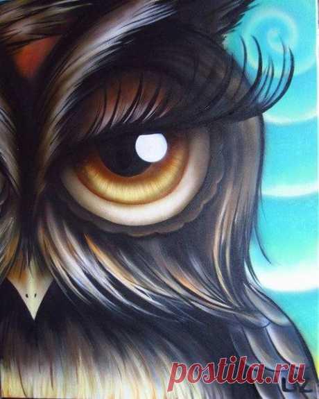 Милые совушки с огромными глазами