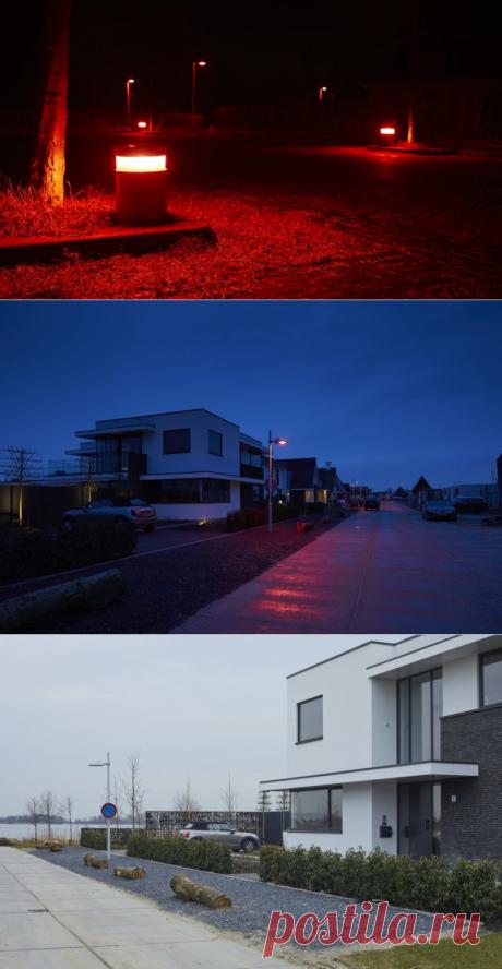 Ночные фонари, которые не мешают летучим мышкам - Экологический дайджест FacePla.net