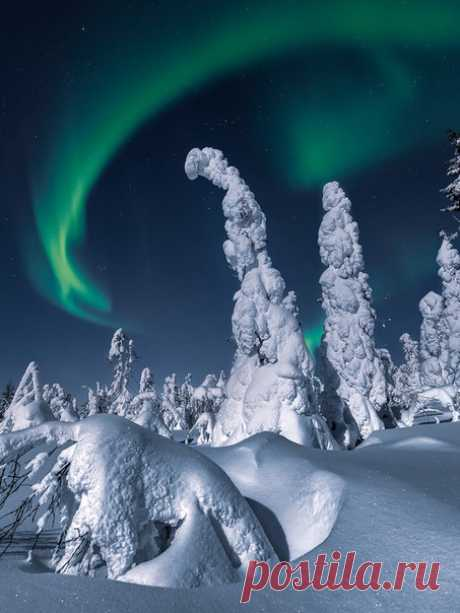 «Танцы под полярным небом» Фото Андрея Баскевича. Доброй ночи!