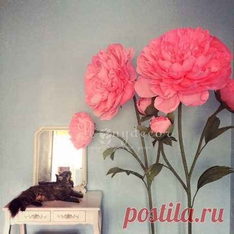 Pinterest (Пин) (41)