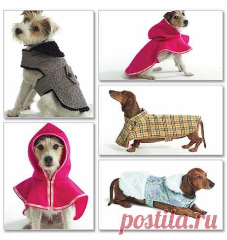 Одежда для собаки своими руками: выкройки подробно, из чего сшить, инструкция