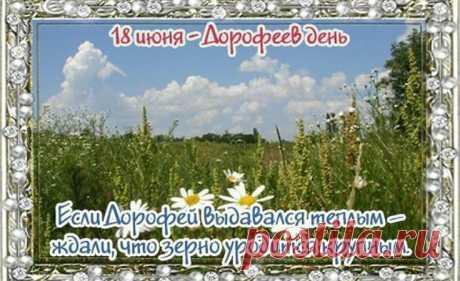 18 июня отмечают Дорофеев день. Приметы и что нельзя делать на Дорофея.