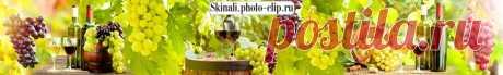 Скинали Вино и виноградная лоза  изображения для кухонного фартука