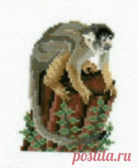 Squirrel Monkey counted cross-stitch chart   Etsy