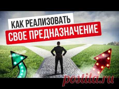 (12) Как реализовать свое предназначение в социуме и стать успешнее - YouTube