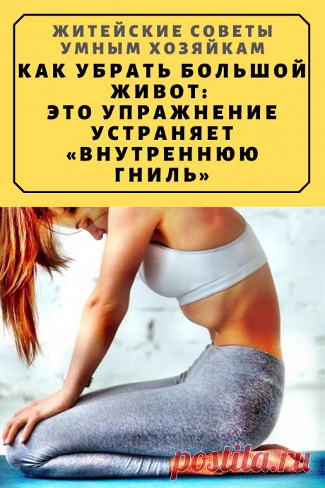 Как убрать большой живот: это упражнение устраняет «внутреннюю гниль»   Житейские Советы