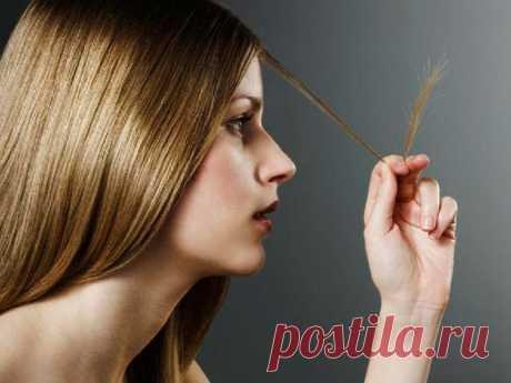 Маска для секущихся волос своими руками | Sqezo