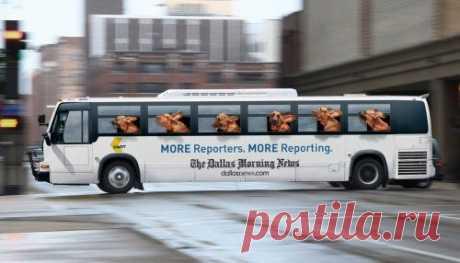 Креативная реклама на автобусах / Приколы