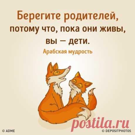 """Век живи-век учись"""