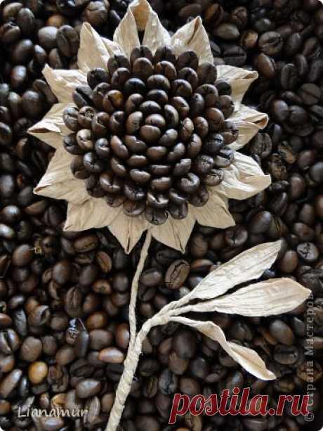 Las fantasías kofeyno-shpagatnye | el País de los Maestros
