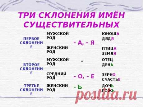 Закрепляем правила русского азыка