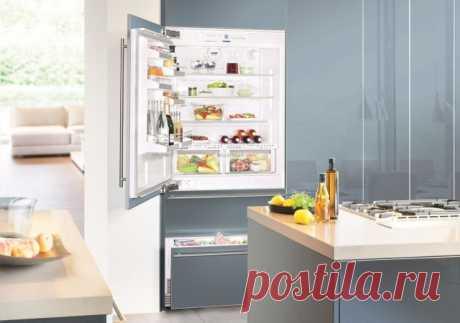 10 простых правил ухода за холодильником — Полезные советы