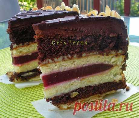 Сafe Iryna: Многослойный торт от МИШЕЛЬ.