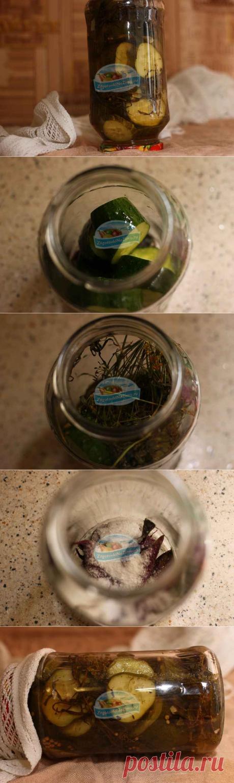 Заготовки из огурцов на зиму. Огурцы с базиликом в банках. Пошаговый рецепт с фото