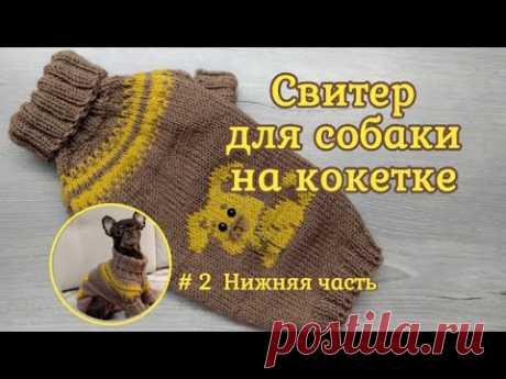 Свитер для собаки на круглой кокетке спицами, #2