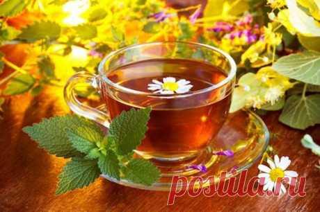 Эффективные дренажные напитки для улучшения здоровья
