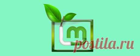 Установка Linux Mint. Пошаговая подробная инструкция • Блог системного администратора Чистая установка Linux Mint на настольный ПК или ноутбук предполагает, что она станет основной ОС вашего компьютера. Другие операционные системы вы