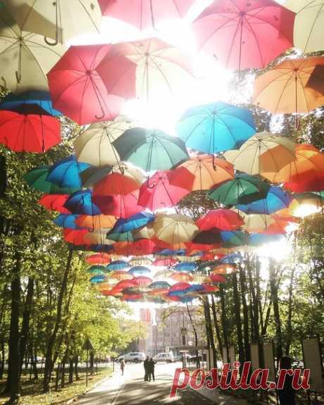 Красногорские зонтики.  Фото @stdk044