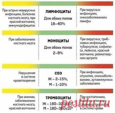 Interpretation of blood tests. Surely keep to yourself, 100% are useful!