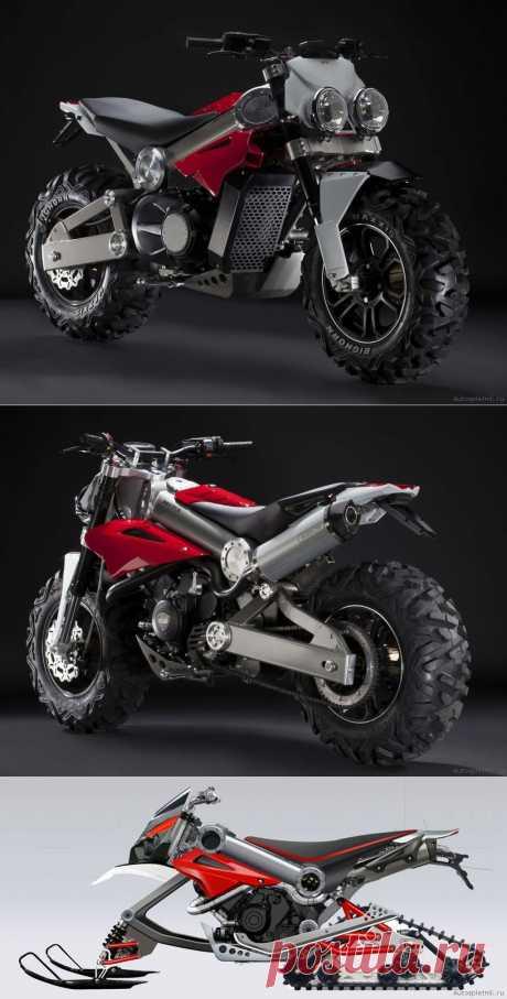 Bikers Life - Мотоцикл Brutus или половина квадроцикла