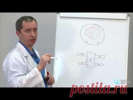 Секреты доктора Шишонина. Лечение гипертонии. Повышенное давление. - YouTube