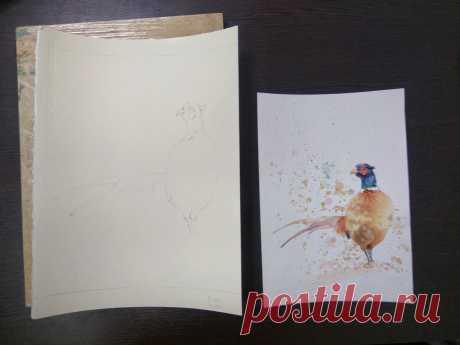 Рисуем фазана на хлопковой акварельной бумаге (часть 1) | Акварель с Кирой Салимовой | Яндекс Дзен