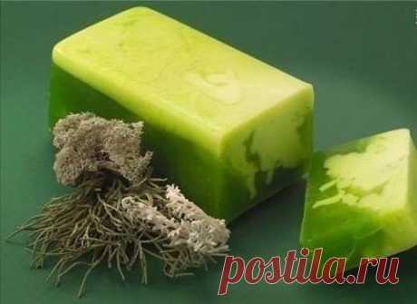 Травяное мыло мы готовим сами. Вам обязательно понравится. Травы в домашнем мыле, это доступные компоненты, купить которые можно в аптеке, или предусмотрительно насобирать и насушить летом. Травяное мыло очень полезно для кожи, им ...