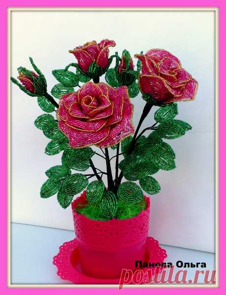 Розы,розы,розы