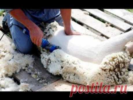Как делают пряжу из шерсти - SHPULYA.com