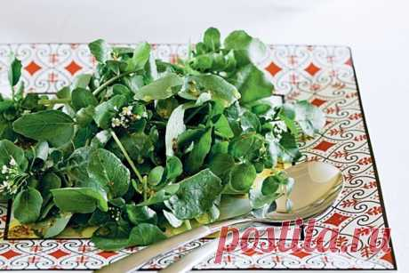 Watercress salad with honey-mustard dressing