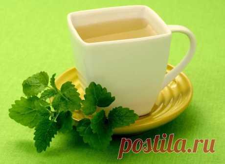 6 полезных добавок к чаю  Анис – его плоды полезно добавлять в чай, как только у вас появилось неприятное шероховатое ощущение в горле. Такой чай можно принимать и если кашель уже начался – вылечится получится гораздо быстрее. 2. Жасмин – он помогает справиться с общим упадком сил и симптомами хронической усталости, поднимет пониженное артериальное давление и возбуждает аппетит. 3. Имбирь – корень имбиря можно натирать на терке и заваривать кипятком или же добавлять кусочк...