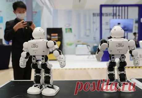 Роботы-библиотекари поругались, выбирая книгу для посетителя - Аргументы недели - медиаплатформа МирТесен