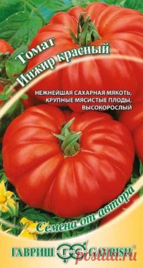 """Семена. Томат """"Инжир красный"""" (вес: 0,1 г) Всхожесть: 95%. Новый среднеранний сорт с потрясающе вкусной и ароматной мякотью. Растение индетерминантное, высокорослое, для выращивания в теплицах и открытом грунте (южные регионы, с подвязкой к кольям). Плоды ребристые у основания, очень крупные, мясистые, многокамерные, массой до..."""