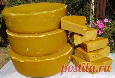 La miel y los productos de la apicultura