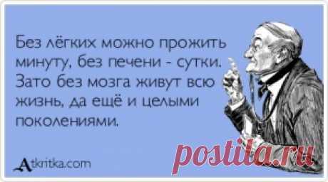 Прикольные открытки - Аткрытка / atkritka.com