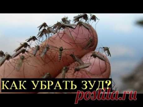 Покусали комары 10 простых Способов избавиться от Зуда и Припухлости! - YouTube