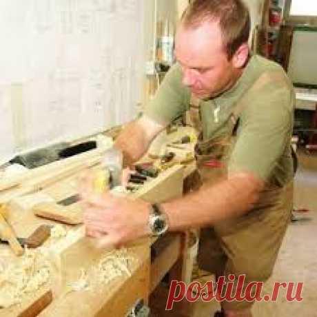 Егор Колесник