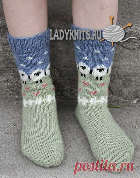 """Knitted spokes children's socks with lambs \""""A summer pasture\"""""""
