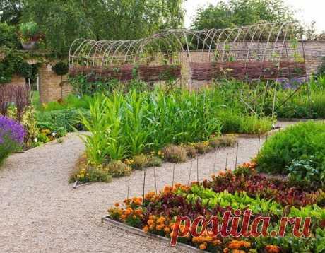 Это красиво: 30+ лучших идей для огородных грядок   Свежие идеи дизайна интерьеров, декора, архитектуры на INMYROOM