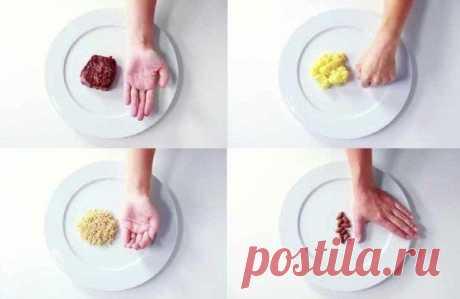 Как не переедать? Определяем размер порций еды при помощи «правила рук».
