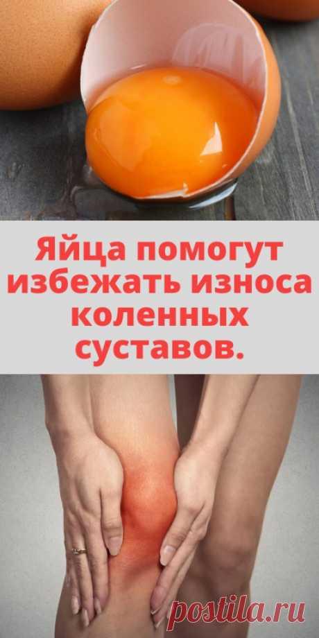 Яйца помогут избежать износа коленных суставов. - My izumrud