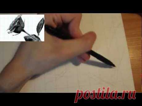 """Рисование карандашом"" / Урок 2 (Рисование контура) - YouTube"