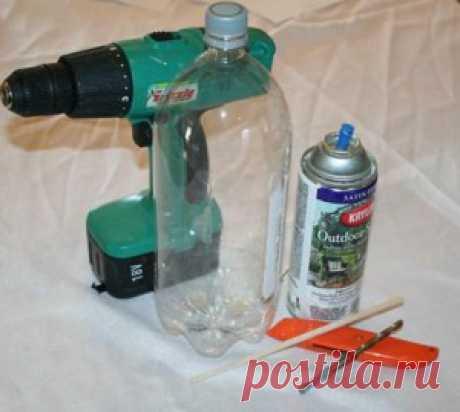 Помидоры в бутылках - выращивание   Сад 365