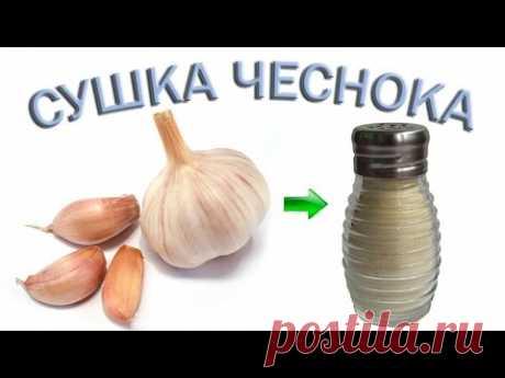 Чеснок полезные свойства – Чеснок на зиму – Сушеный чеснок