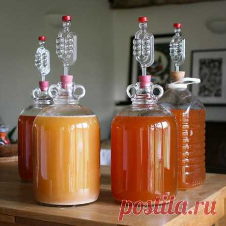 How to make cider? Production of cider in house conditions: recipes